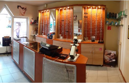 látásvizsgálati lehetőségek jack russell terrier látása