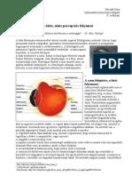 Látás keratoconus helyreállítása, A látás javítása és a táplálkozás