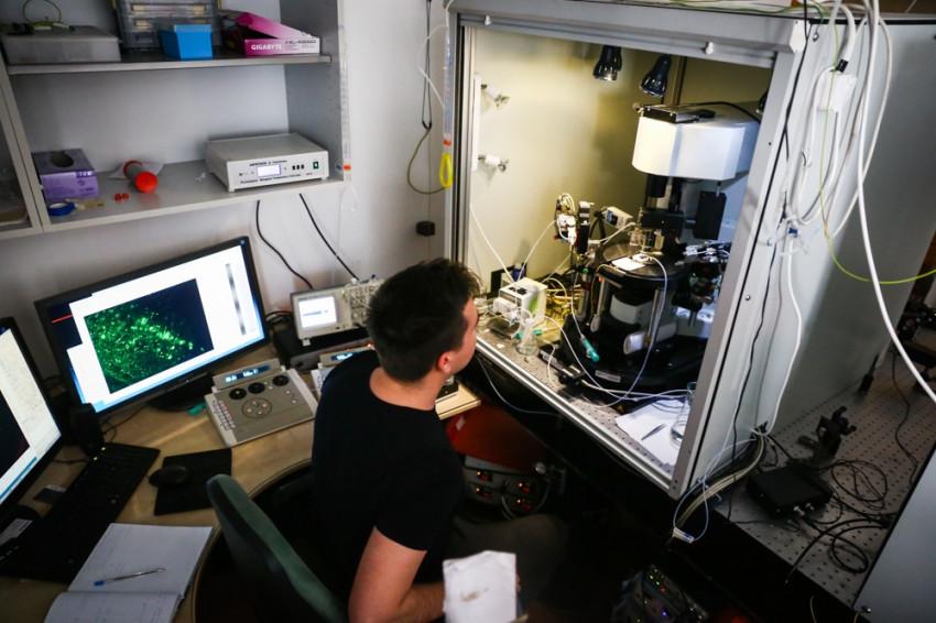 hogyan lehet helyreállítani a látást mikroszkóp után