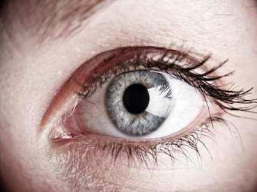 szembetegségek homályos látás az egyik szem Növényi látás