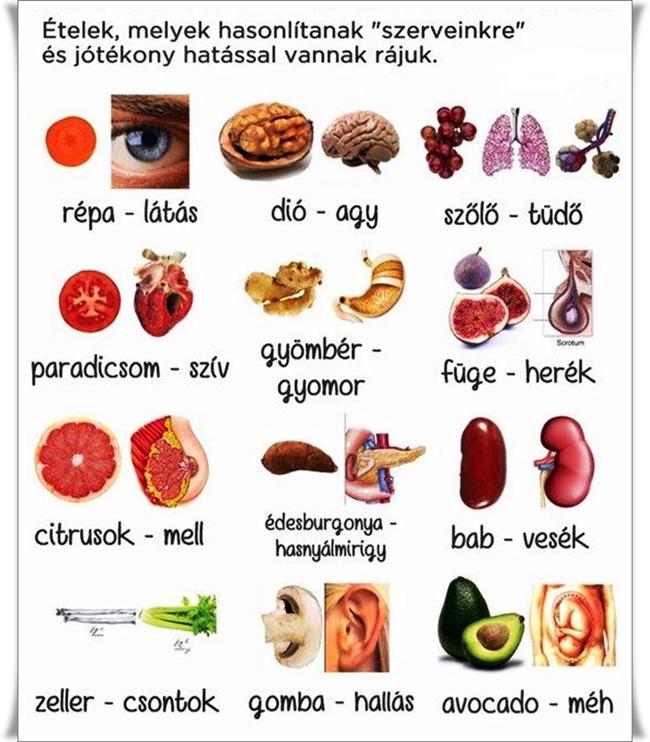 látás étel