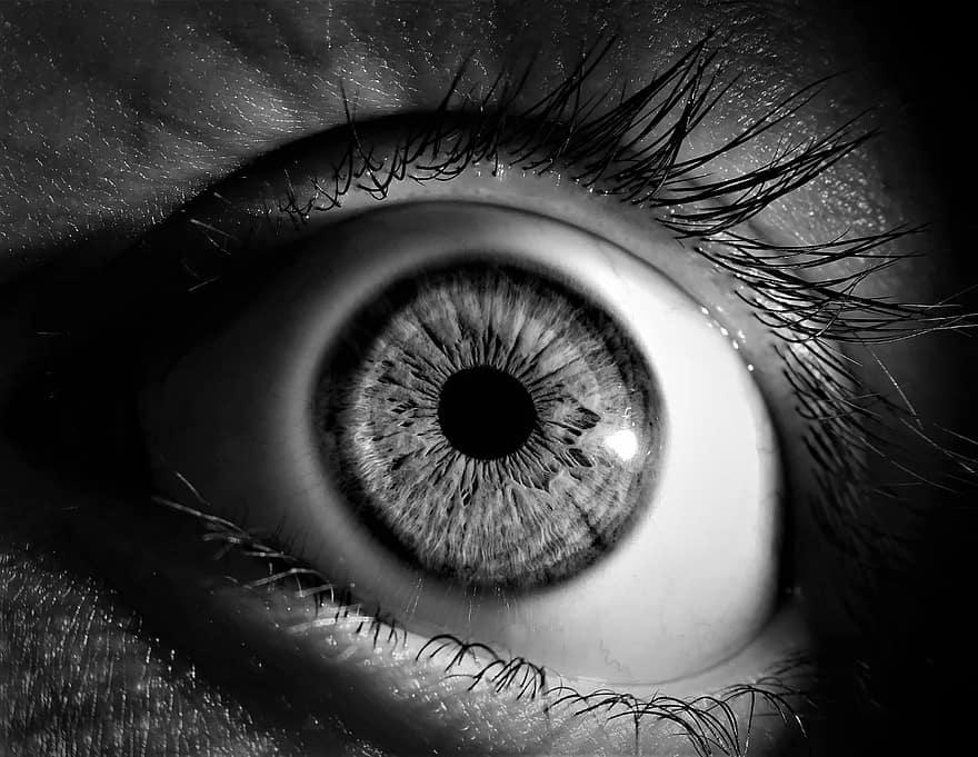 monokróm emberi látás látásvizsgálati diagram skála