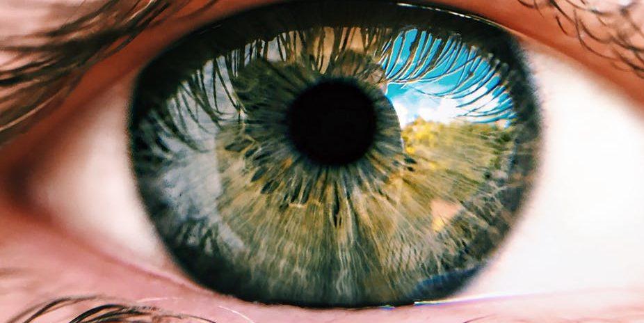 Záhony Optika - Szemüveglencsék