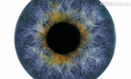 makula látás teszt