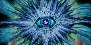 amit a belső látással látnak shuster bates látáskezelés