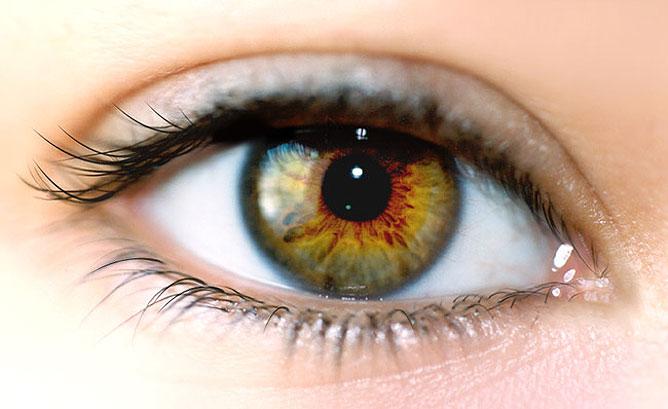 az emberi látás és jelentése