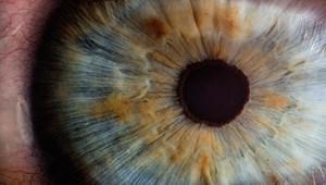 Hogyan lehet egy órán belül visszaadni a látást