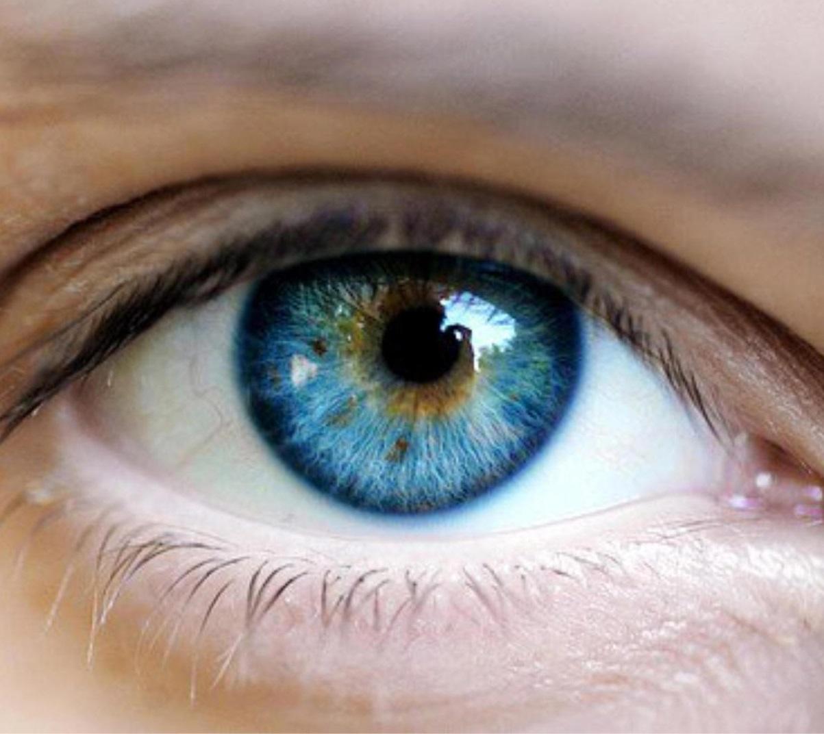 új látás min vitaminok a látás Franciaország számára
