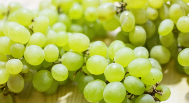 látás és szőlő