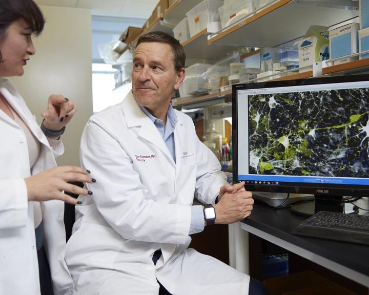 OTSZ Online - Látászavarok Parkinson-kórban