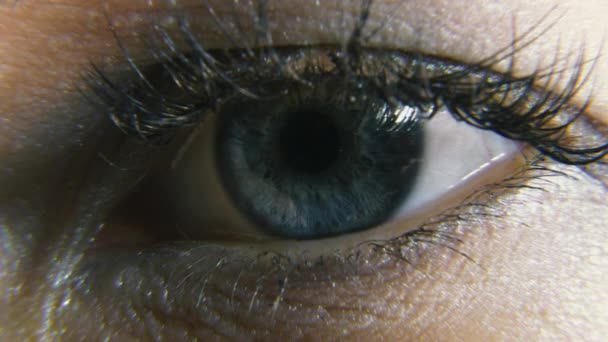 pupilla szemlátás tekintete