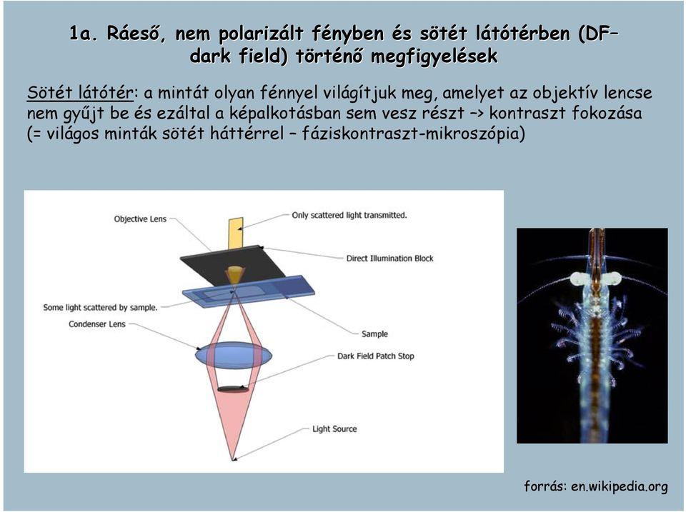 sötét látótér látásjavító alkalmazások