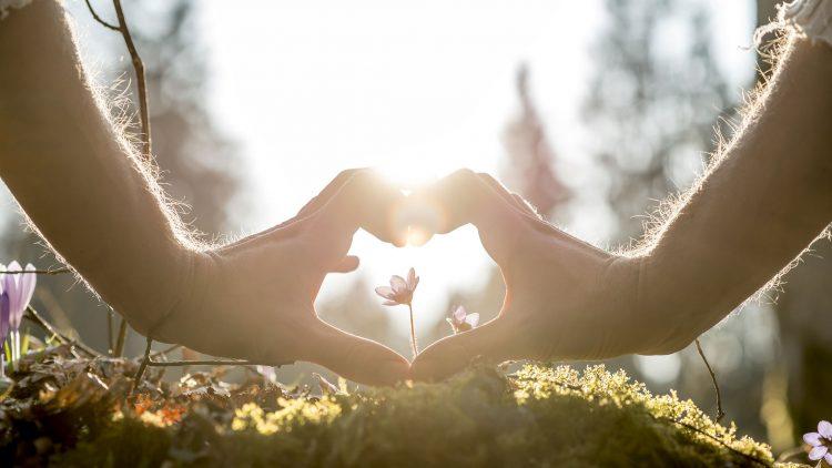 Szemünk világa: a leggyakoribb szembetegségek - HáziPatika