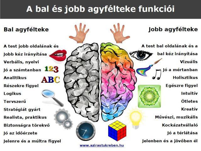 látás és az emberi agy magas myopia látás