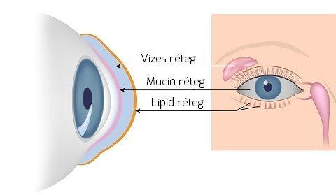 látás a normál felett vakok látórendszerei