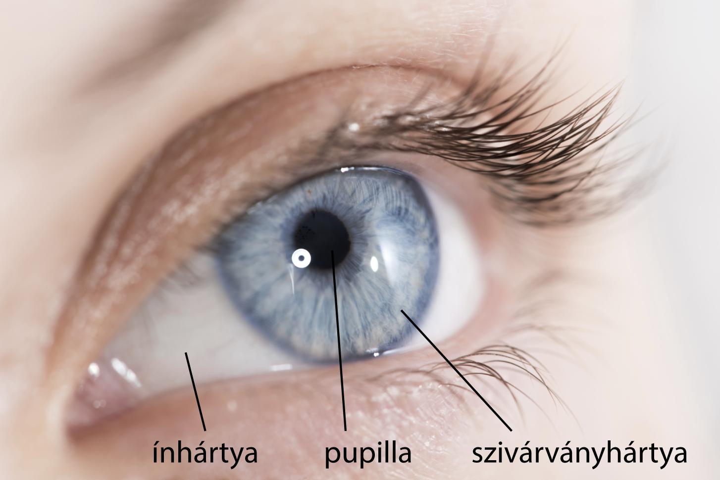 Így befolyásolja a látásunkat a cukorbetegség