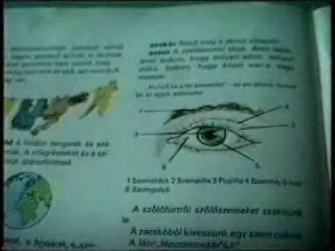 akupunktúrás látás