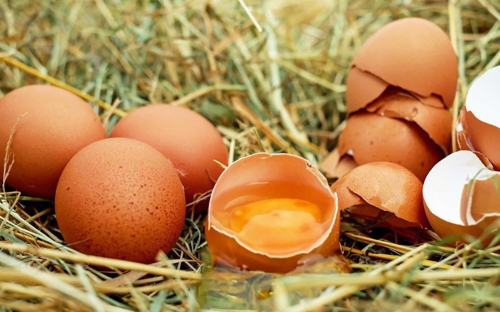 hogyan kezeljük a látást egy tojással