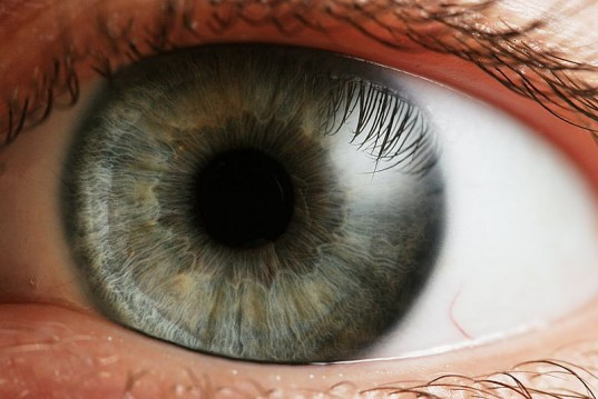 a látás minden nap csökken