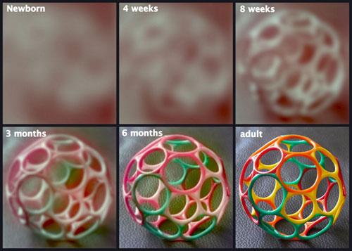 látás az első hónapban